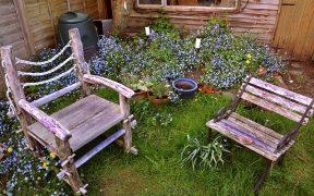 Dusza ogrodu